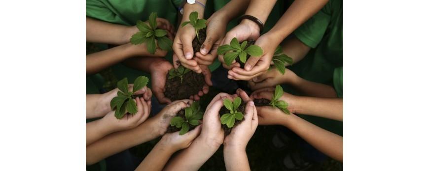 Dezvoltarea copiilor prin cresterea plantelor